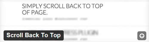 Scroll-Back-to-Top